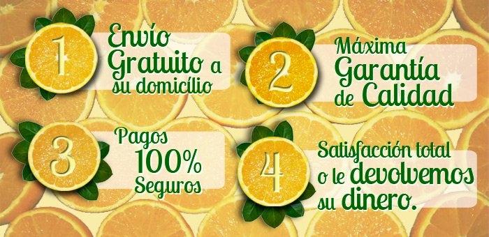 Caso éxito vender naranjas por internet